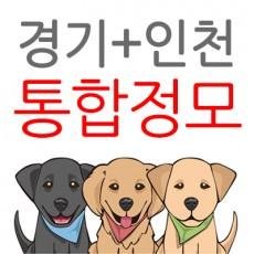 경기+인천 통합정모